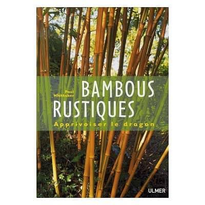 Bambou en France